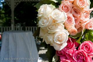 Roses on Gazebo